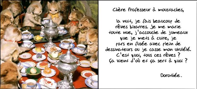 carte.chat
