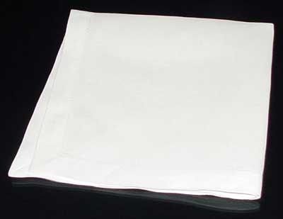 Napkin Fold #3