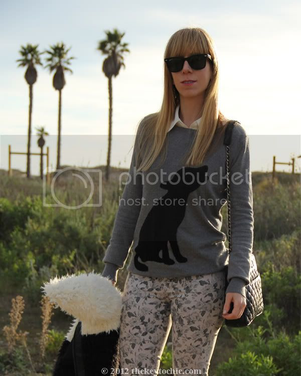 dog print sweater, J Brand floral jeans, Lumiere two-tone colorblock jacket, Steve Madden Grettta, Los Angeles fashion blog, southern California fashion blogger