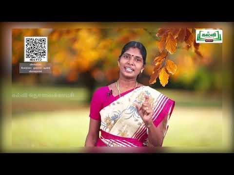 11th Zoology விலங்குலகம் பாடம் 2 அலகு 1 Kalvi TV
