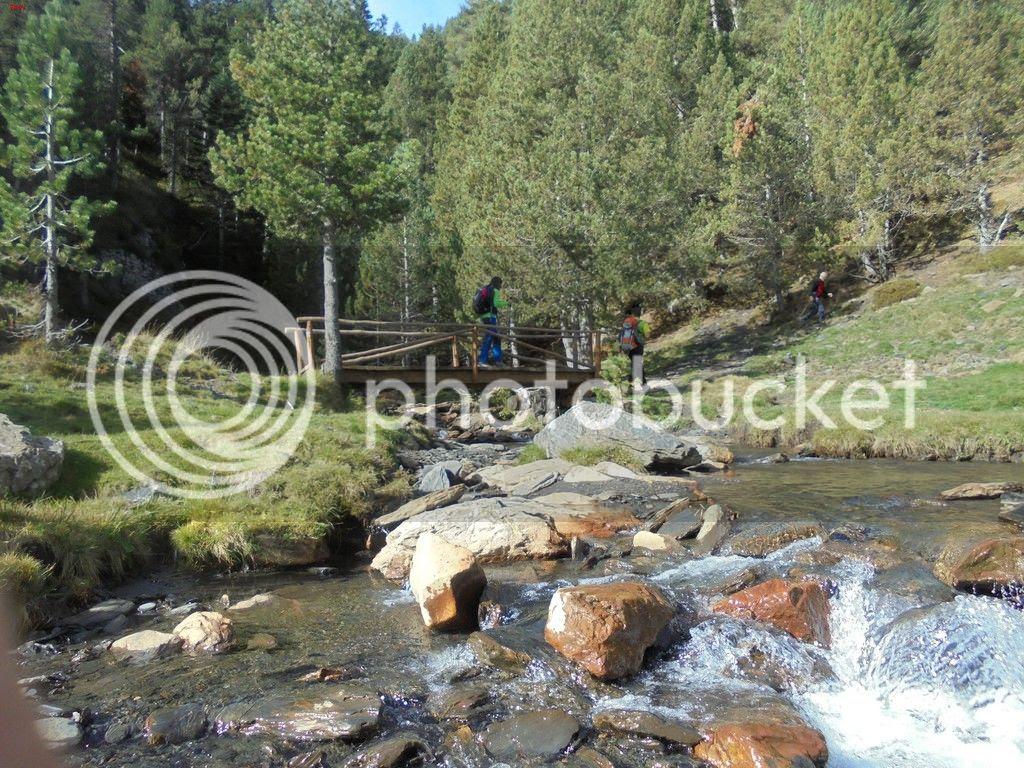 photo BACHIMALA - CULFREDAS 11-10-15 010_zpsr4a7krq2.jpg