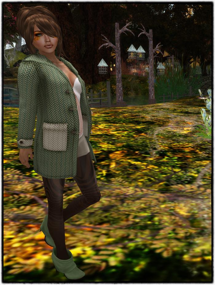 Autumn Walk 1