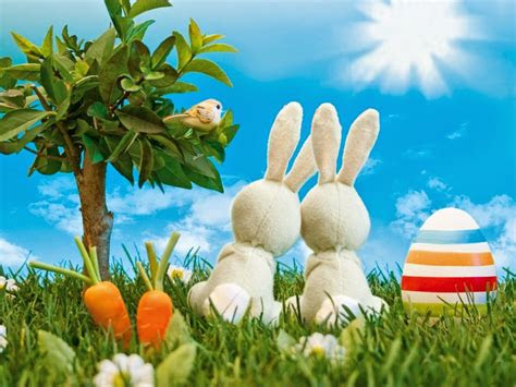 easter animations   toanimationscom hd