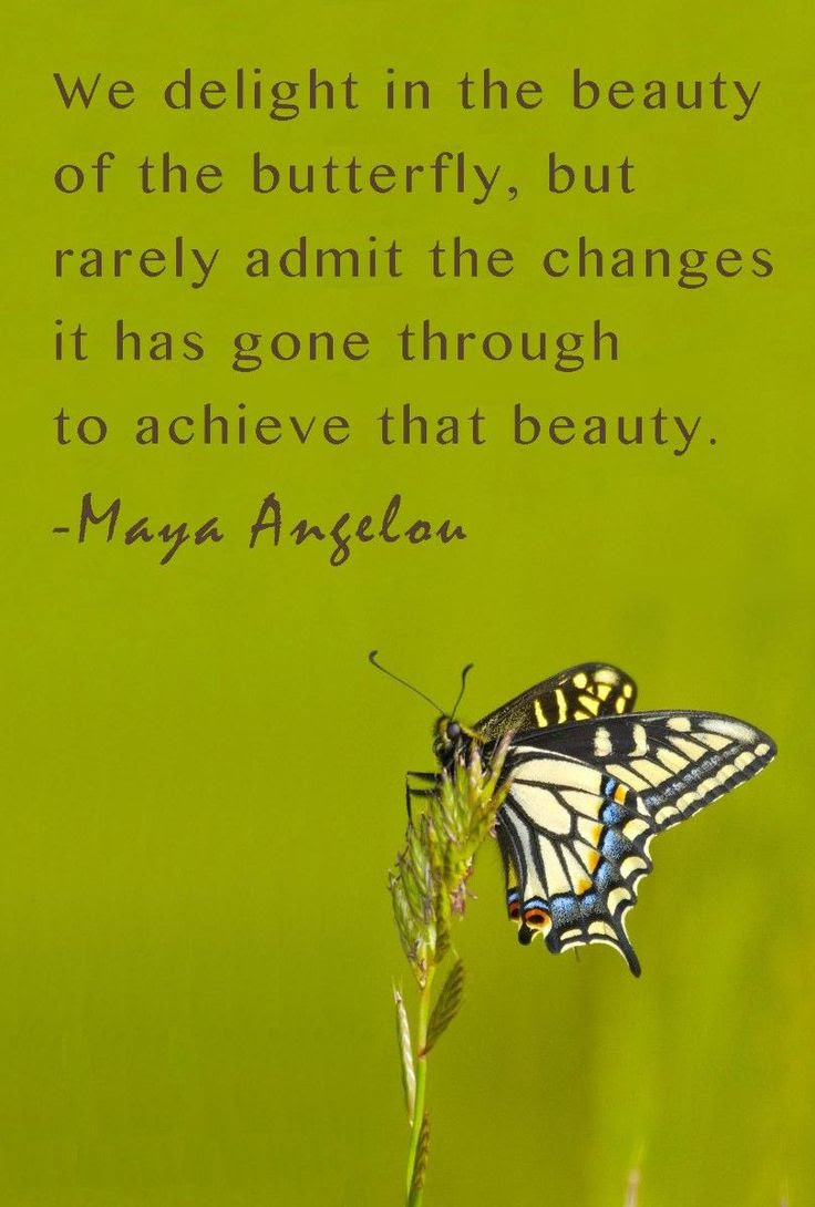 Quotes About Beauty Maya Angelou 21 Quotes