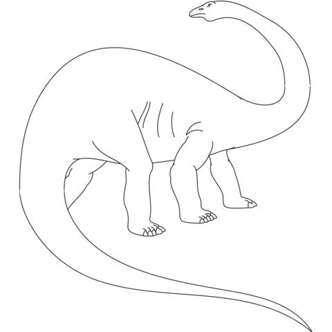 Dibujo De Dinosaurio Apatosaurio Jurásico Para Colorear Dibujos