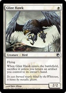 Glint Hawk