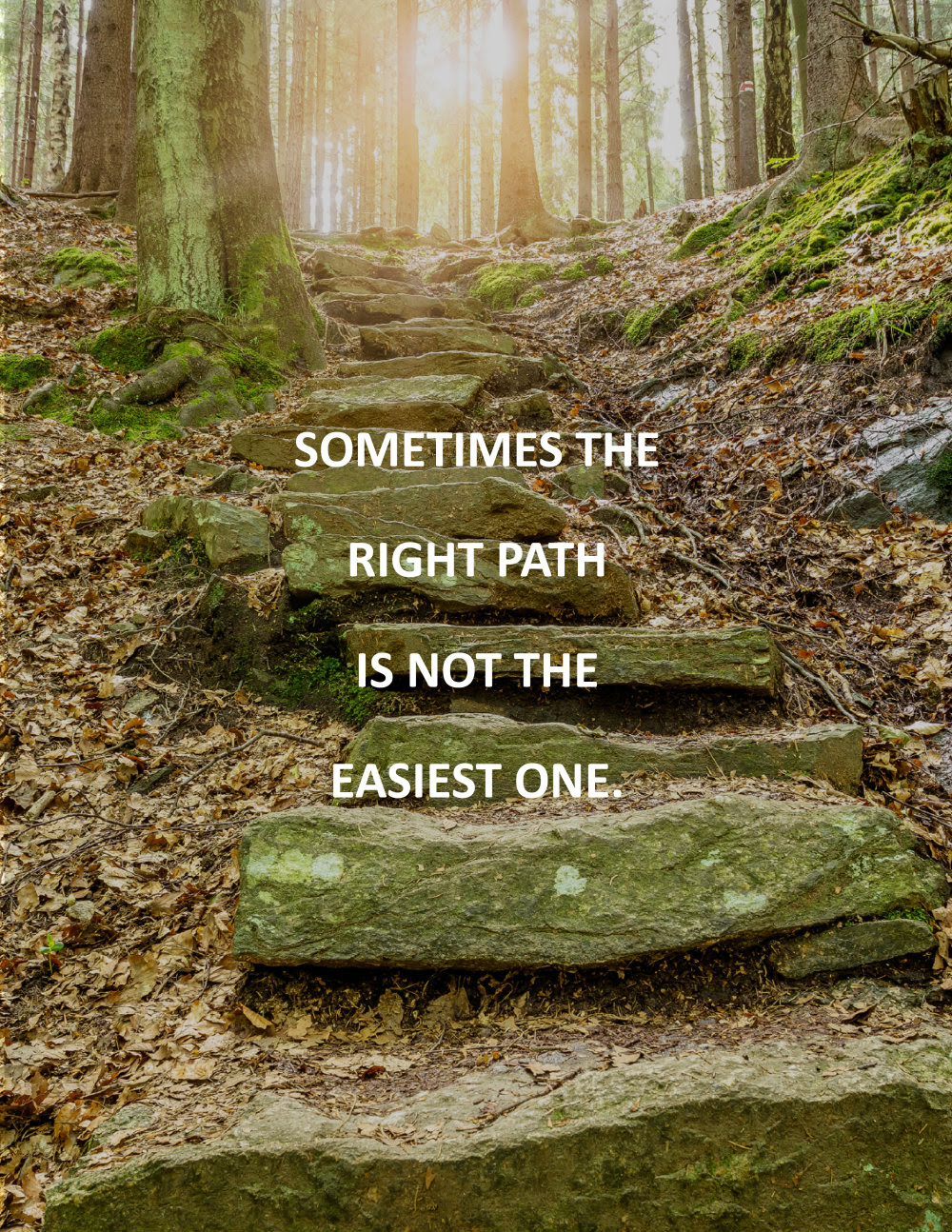 The Wise Path Quote Wallpaperhawk