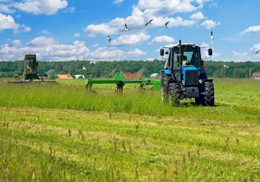 Χωρίς «χαράτσι» η υποβολή αιτήσεων για τις αγροτικές επιδοτήσεις