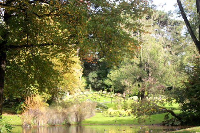 photo jardin-plantes-Nantes-lac-centralpark_zps30b88db4.jpg