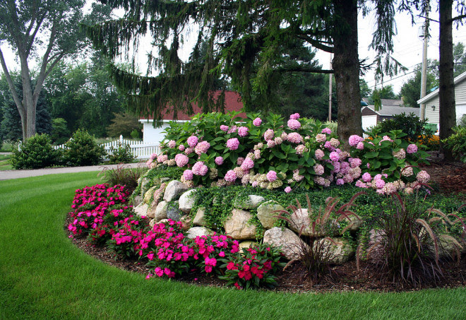 Pink Garden Design I