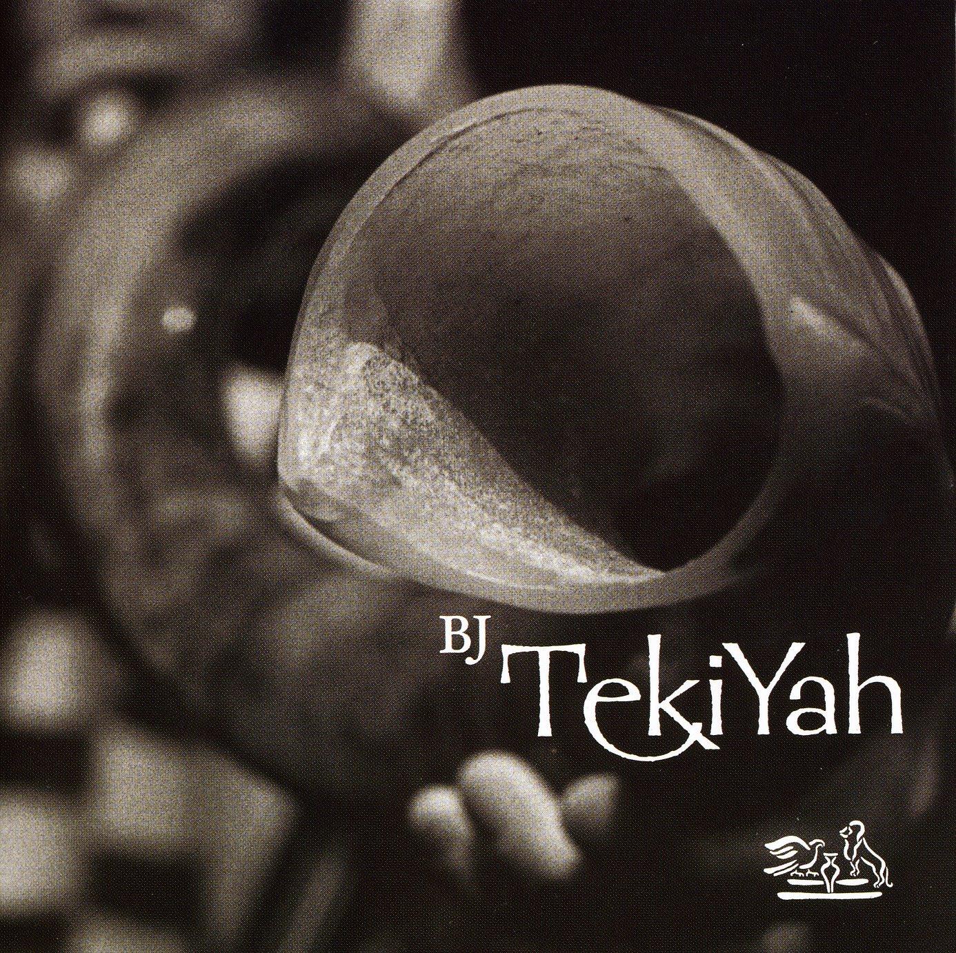 http://ak1.ostkcdn.com/images/products/3024770//bmmg/ent/Bnei-Jeshurun-TekiYah-High-Holy-Days-L737138707920.JPG