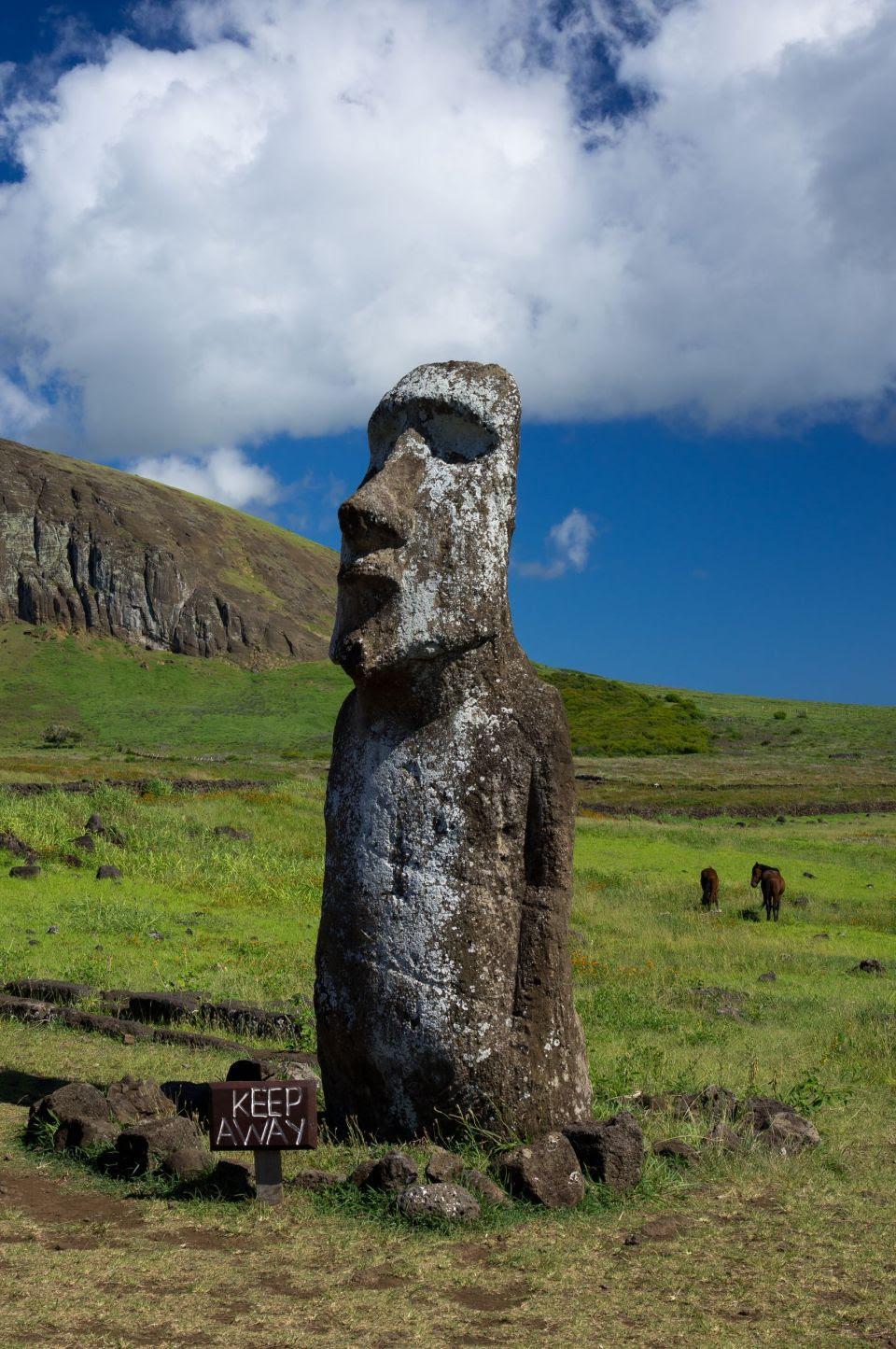 Sous des mètres de terres, les corps des statues sont préservés