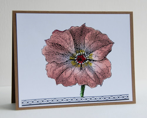 Poetic flower with SRM Sticker (lacey border)