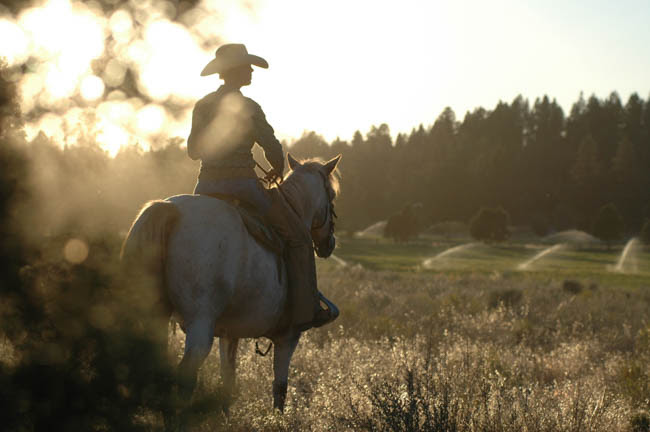 Cowboys And Cowgirls Jody L Miller Horse Photography