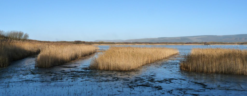 23733 - Kenfig Pool