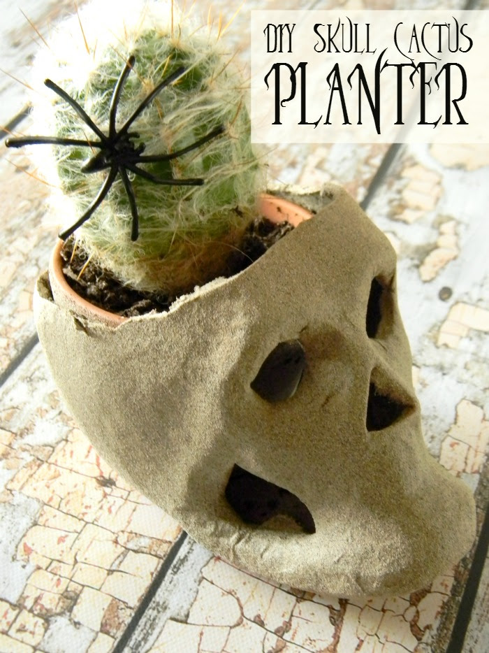 DIY Skull Cactus Planter byLiving Lavida Holoka
