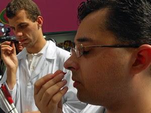 Silvano sente o cheiro de frutas no Mercado Municipal de São Paulo ao lado de outro aluno do curso (Foto: Divulgação/Fundação Dorina Nowill)