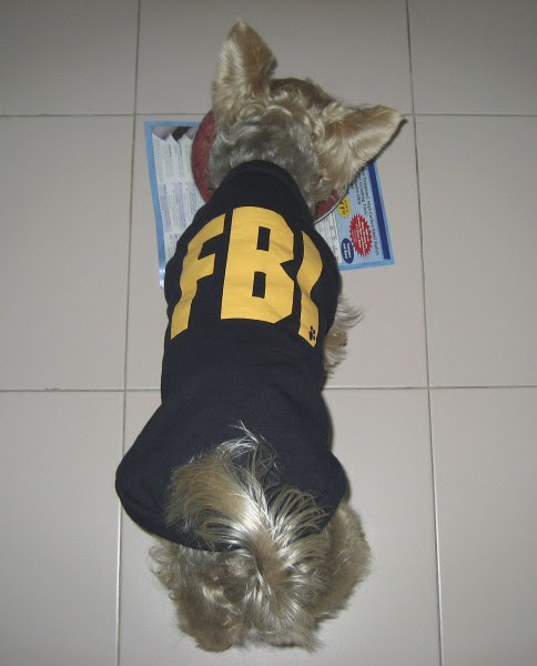 fbi_04_chowtime.jpg