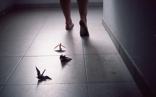 Foto 10. Los pasos en sigilo.