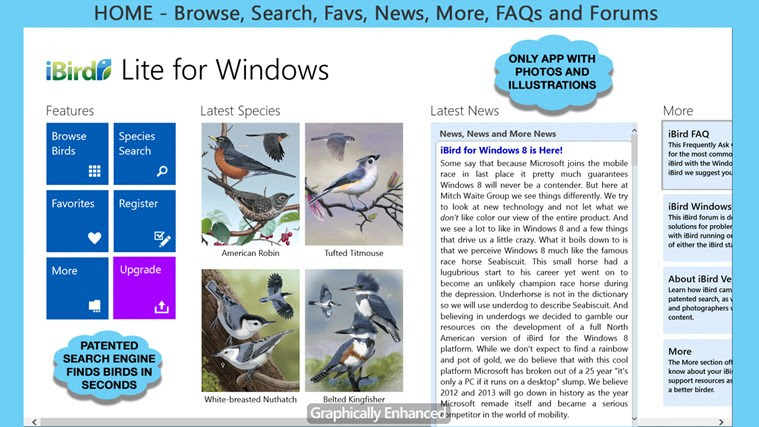 more about birds