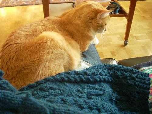 A helping paw by Asplund