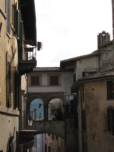 102-Spoleto Street
