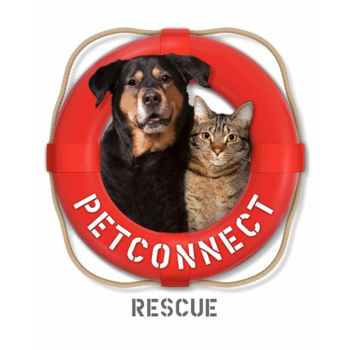 PetConnect Rescue shirt