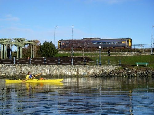 Train or Kayak... Who Will Win?