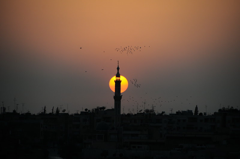 Syrian Landscape