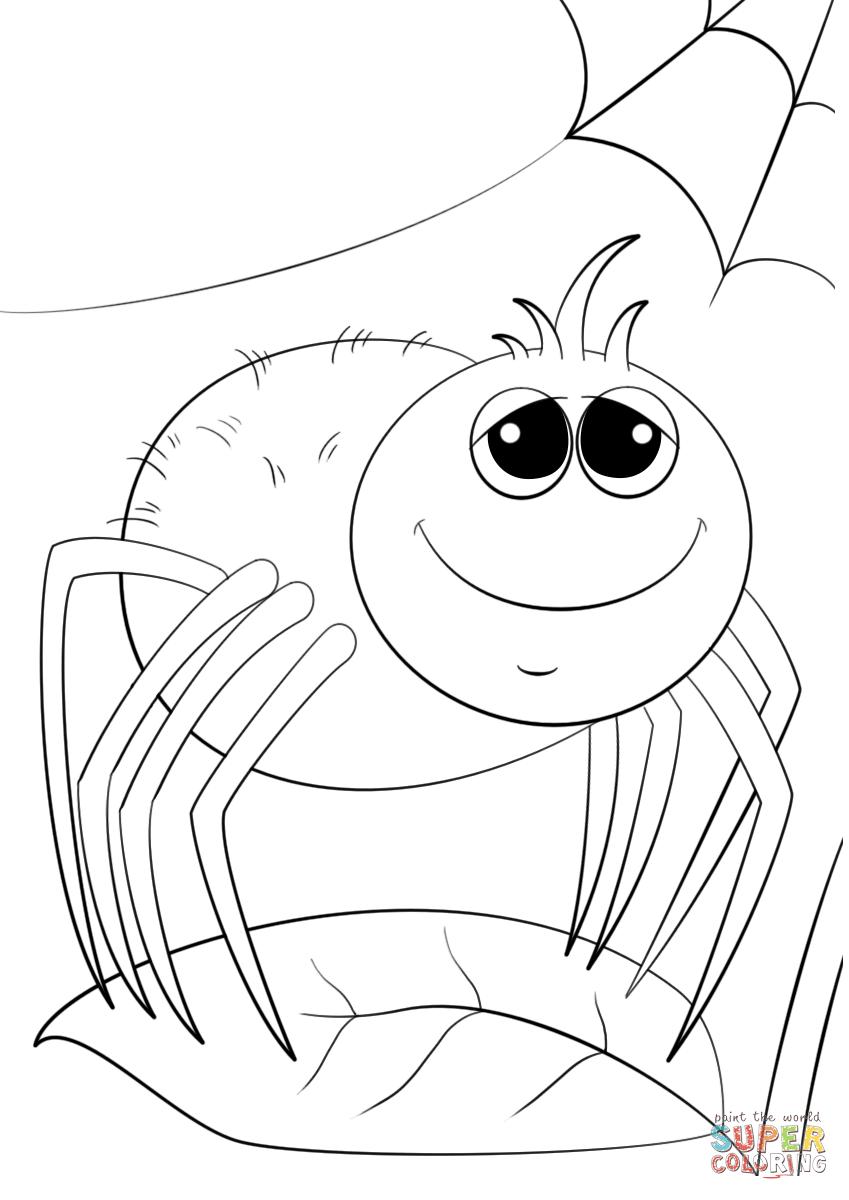 Afbeeldingsresultaat voor sweet spider