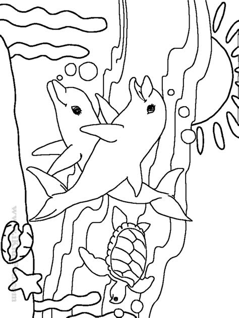 cute ocean animal coloring pages  coloring pages