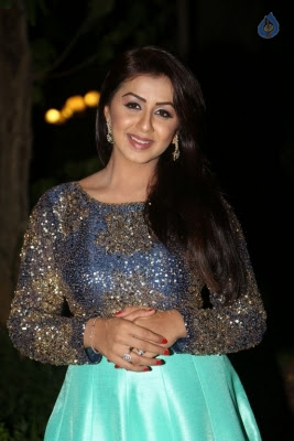Nikki Galrani New Photos - 19 of 36
