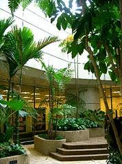 Central Lending Library 10