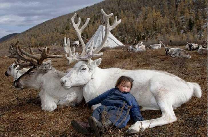 mongolia_reindeer_tribe_6