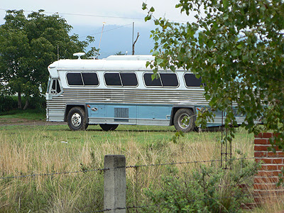 vieux bus.jpg