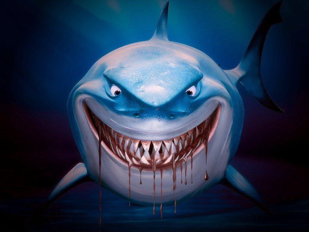 Tibur�n de Buscando a Nemo  1024x768 :: Fondos de pantalla y wallpapers
