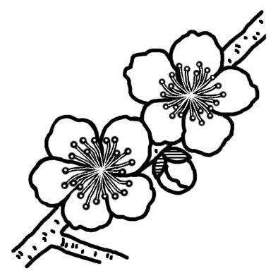 ウメ4ツバキウメ椿梅冬の花無料白黒イラスト素材