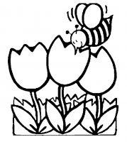 Disegni Da Colorare Della Primavera Disegni Primavera Fiori E Natura