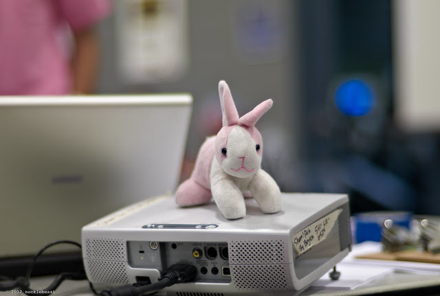 NSO bunny on top of projector