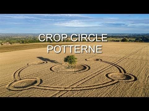 Hermoso Crop Circle alrededor de un árbol