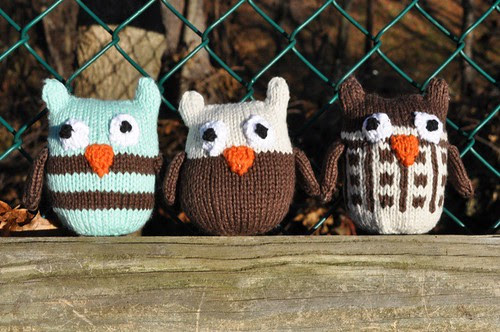 OwlsFence.jpg