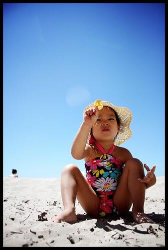 picton, sandbanks