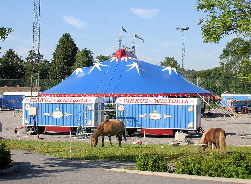 Circus Wictoria