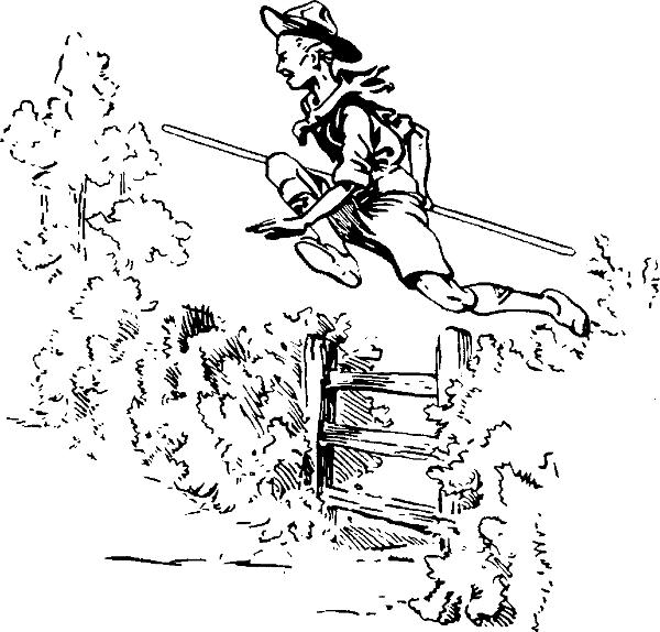 hurdle fence
