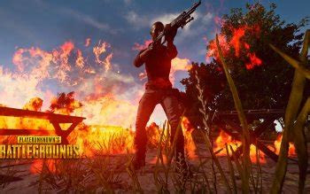 playerunknowns battlegrounds hd wallpapers