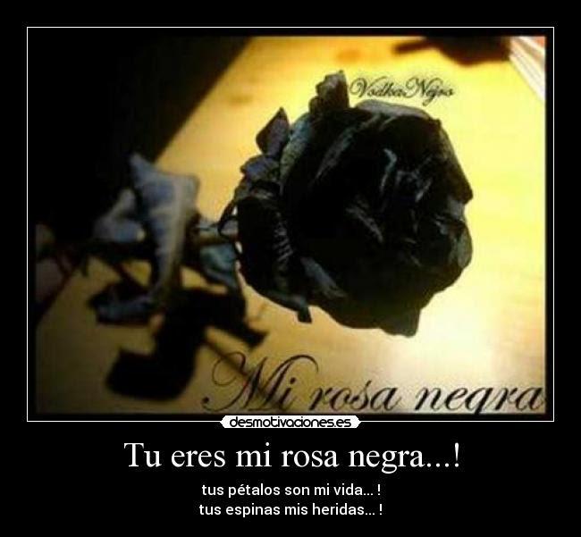 Tu Eres Mi Rosa Negra Desmotivaciones
