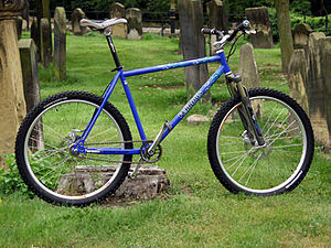 Single-speed mountain bike
