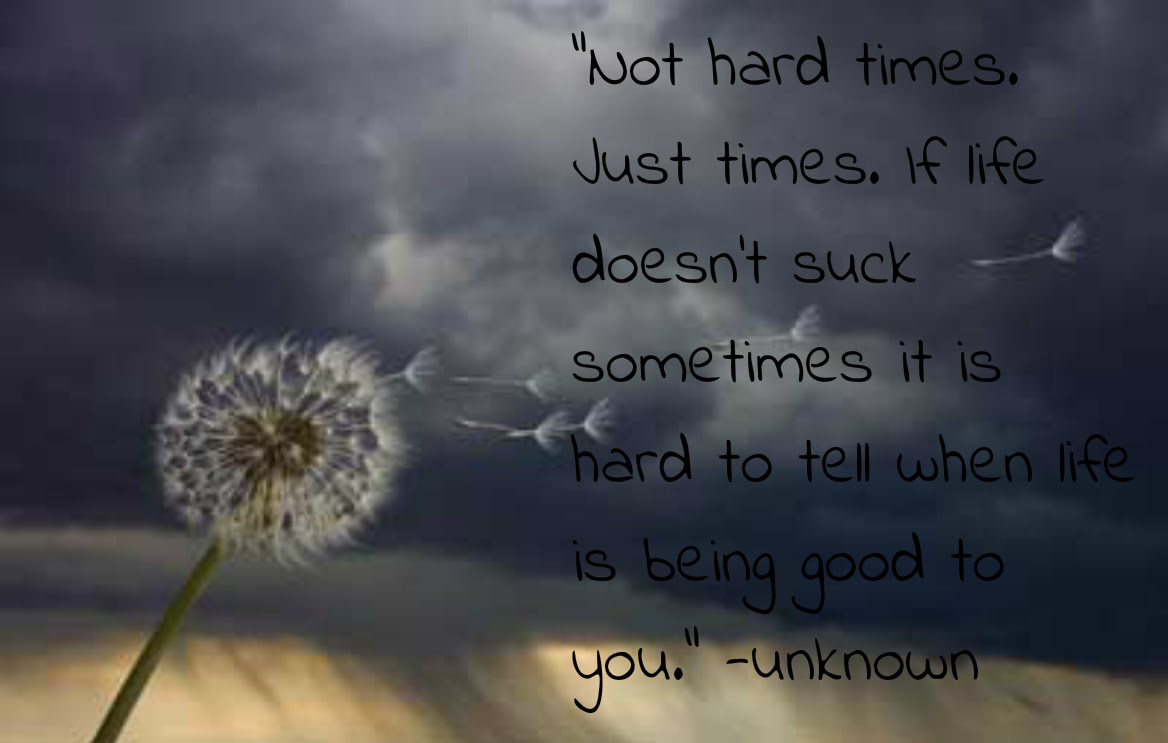 Not Hard Times Just Times If Life Doesn T Suck Sometimes It Is