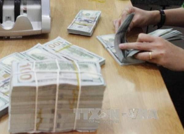 Tỷ giá USD hôm nay 30/11 ổn định. Ảnh minh họa: TTXVN