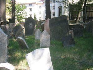 Vieux cimetière juif de Prague 5770